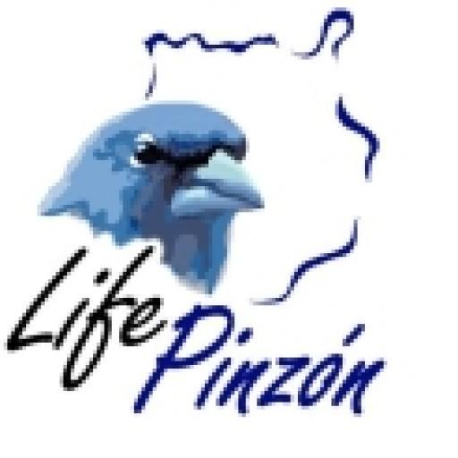 LifePinzon.org