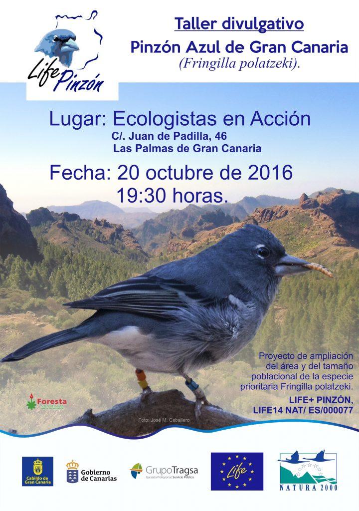 ecologistas en accion BOCETO
