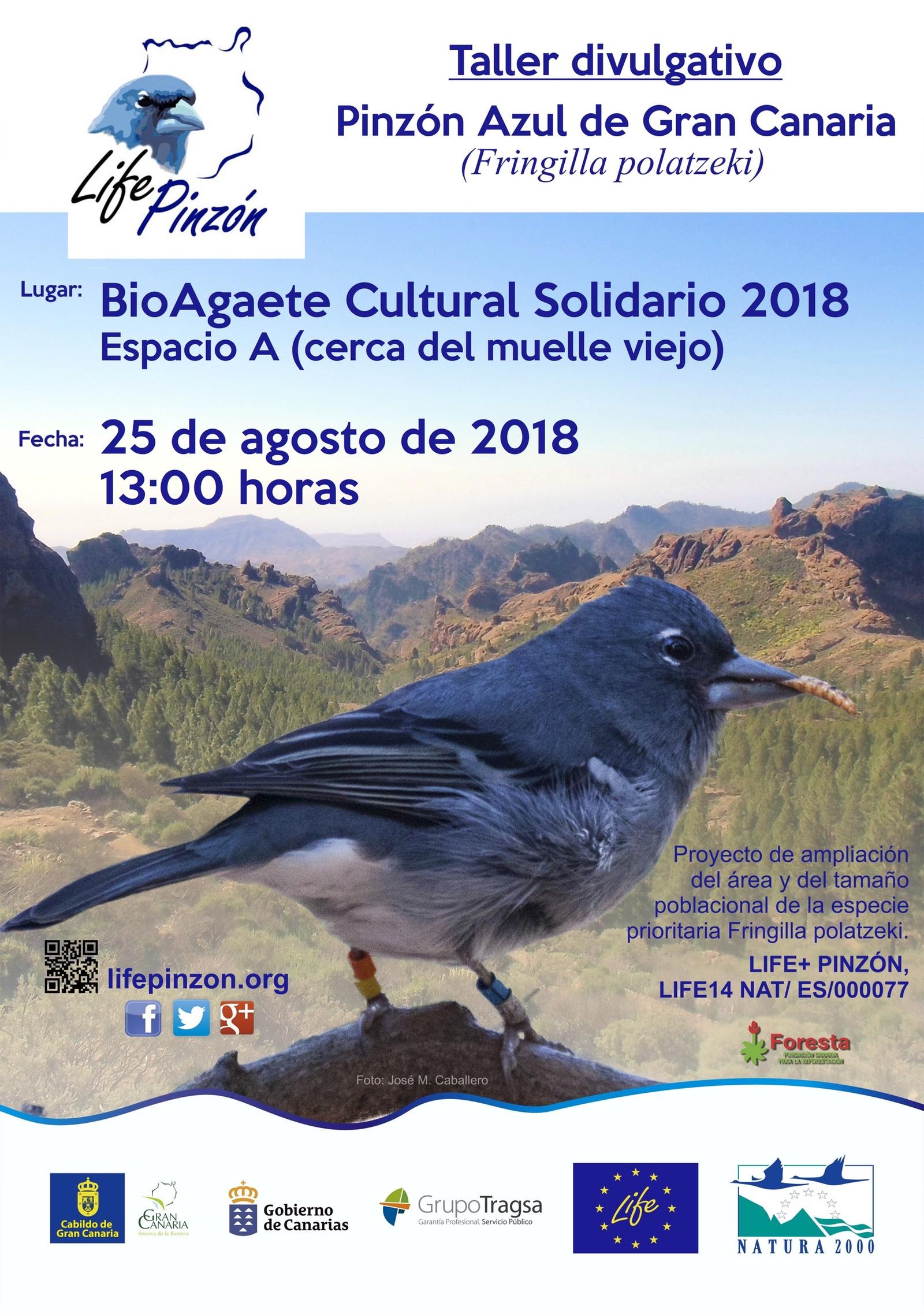 Charla divulgativa en el Festival BioAgaete Cultural Solidario 2018