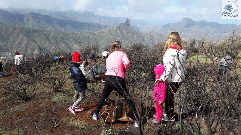 2-Reforestacion-con-voluntarios-del-proyecto-LIFE-Pinzon-MARZO-2018