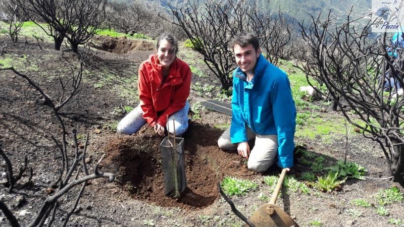 5-Reforestacion-con-voluntarios-del-proyecto-LIFE-Pinzon-MARZO-2018