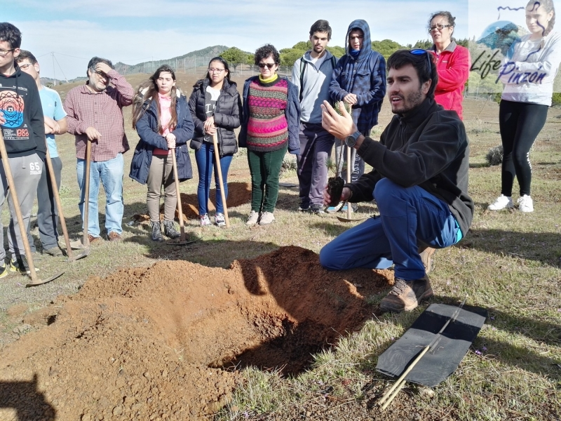 Reforestacion-con-alumnos-del-IES-Vega-de-San-Mateo2