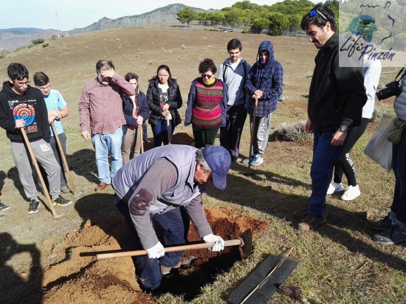 Reforestacion-con-alumnos-del-IES-Vega-de-San-Mateo3