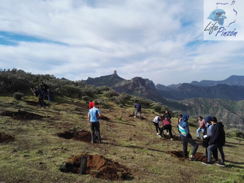 Reforestacion-con-alumnos-del-IES-Vega-de-San-Mateo4