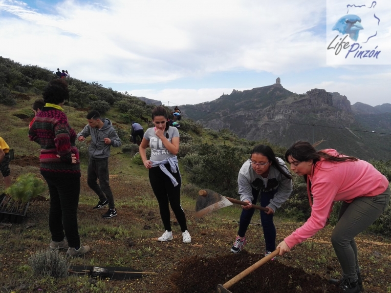 Reforestacion-con-alumnos-del-IES-Vega-de-San-Mateo5