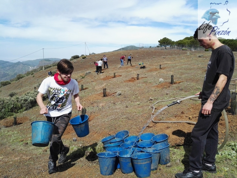 Reforestacion-con-alumnos-del-IES-Vega-de-San-Mateo7