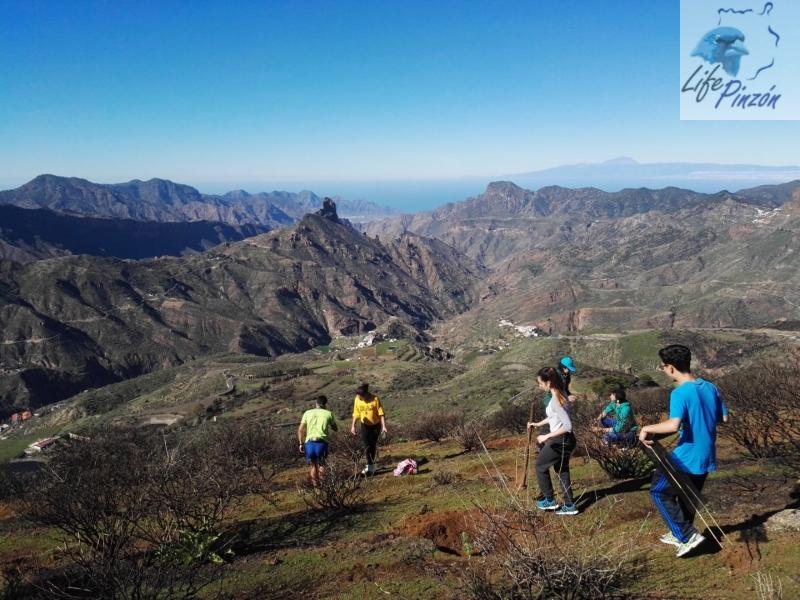 Reforestación-en-la-Cumbre-con-el-IES-San-Cristóbal-2