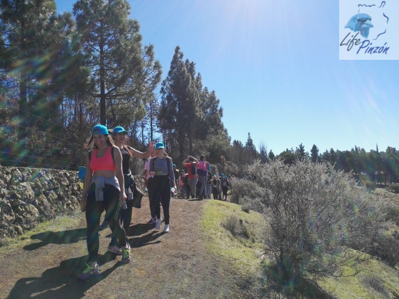 Reforestación-en-la-Cumbre-con-el-IES-San-Cristóbal-6