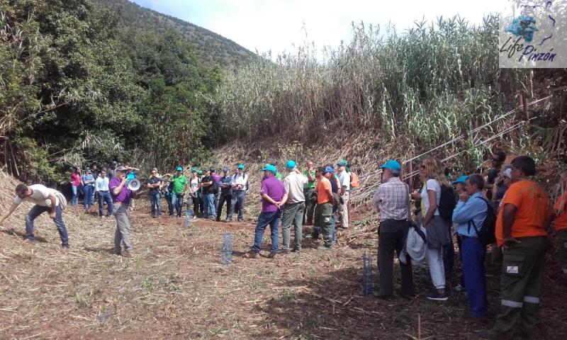3. life pinzon azul Gran Canaria – dia del medioambiente