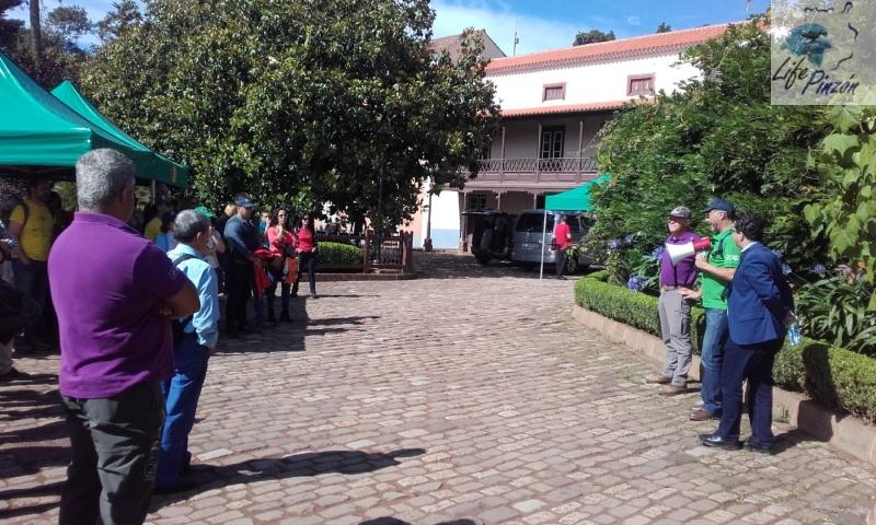 4. life pinzon azul Gran Canaria – dia del medioambiente