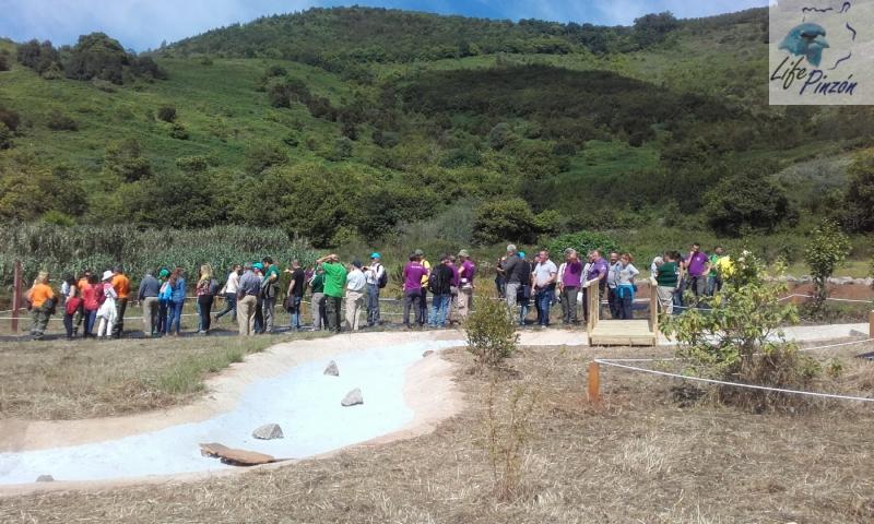 5. life pinzon azul Gran Canaria – dia del medioambiente