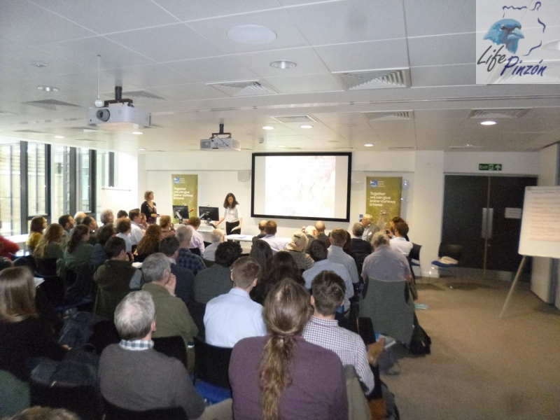 6.-Presentacion-LifePinzon-Conferencia-Internacional-Life-Stone-Curlew