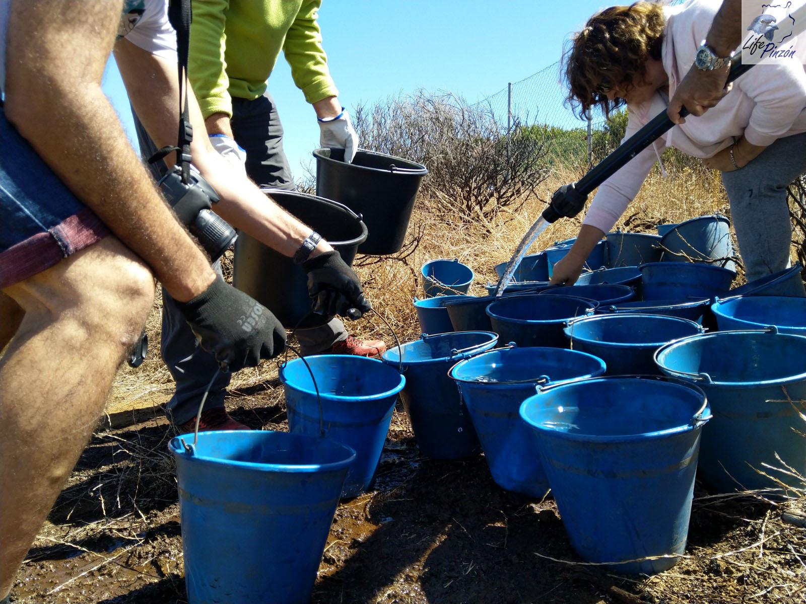 Voluntarios riegan las repoblaciones con 18000 litros de agua