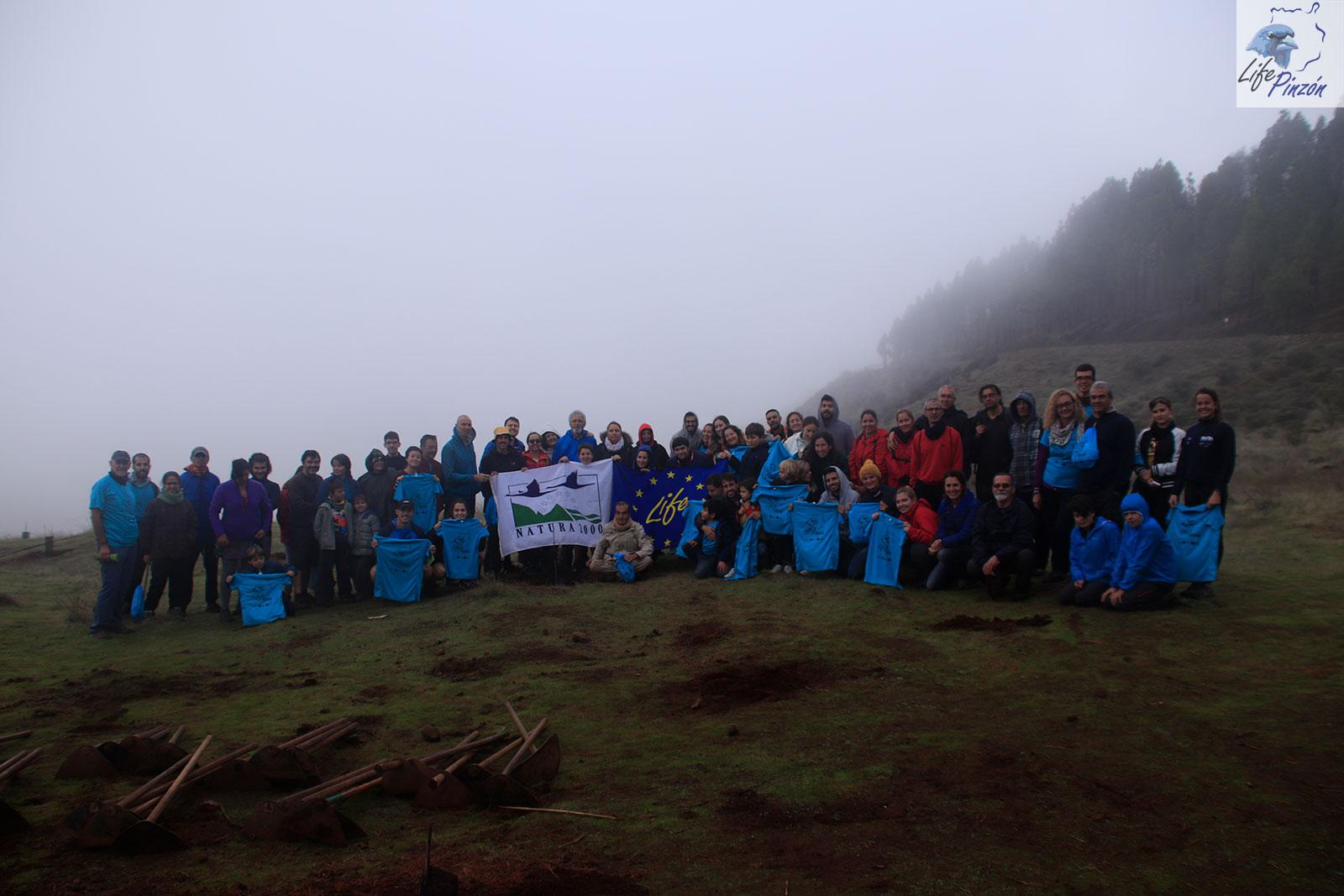 Acción final de Voluntariado de repoblación del proyecto LIFE+ Pinzón23 Noviembre 2019